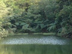 如意湖-3