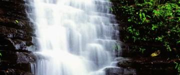 茄苳瀑布-2