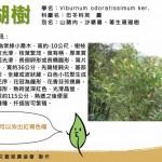 【社區文創】推動在地植物染,發展在地特色產業